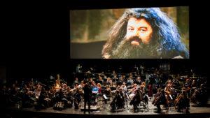 Harry Potter concerto Roma